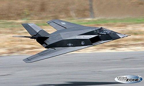 avion de combate radiocontrol